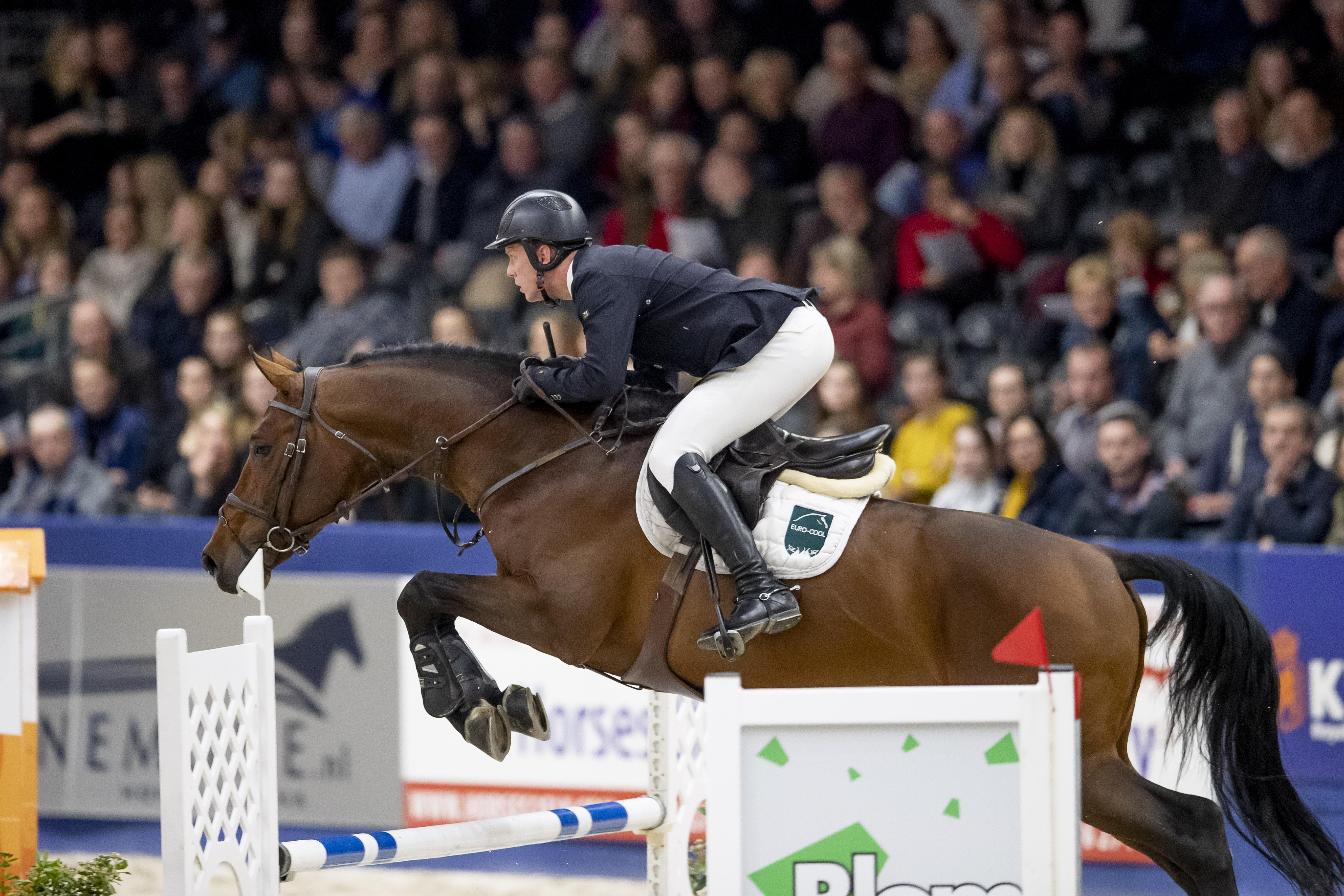 Springen Klasse M - Hengstenkeuring KWPN, 's Hertogenbosch 2019